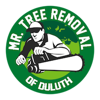Mr Tree Removal of Duluth